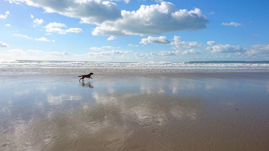 Merci Lysiane pour cette jolie photo de l'Atlantique